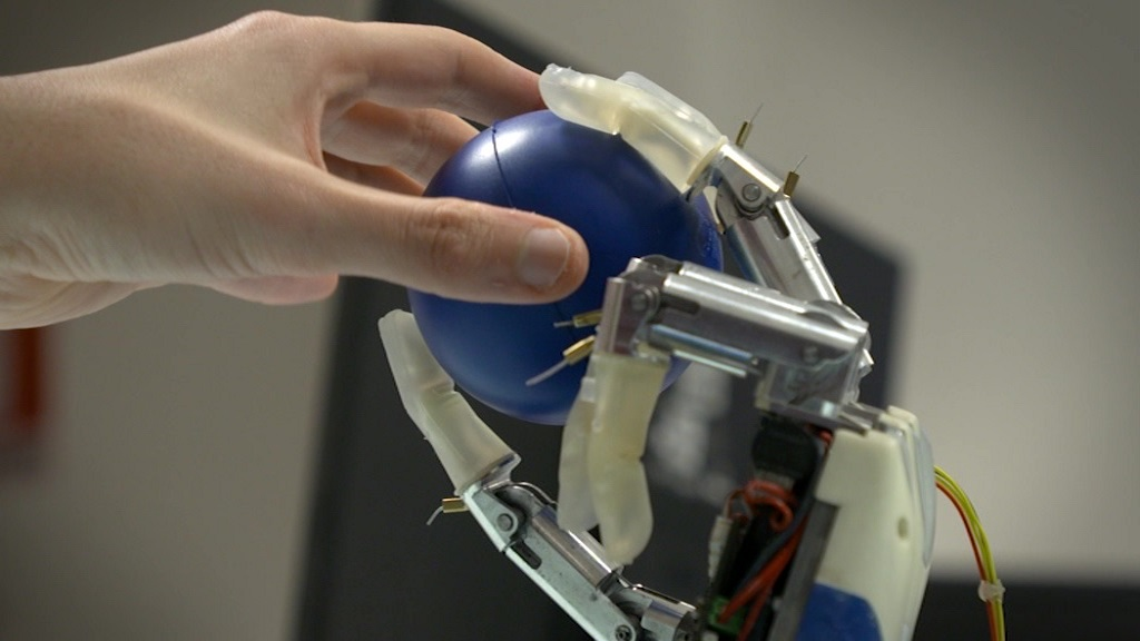 A human hand and robotic hand hold a ball together.