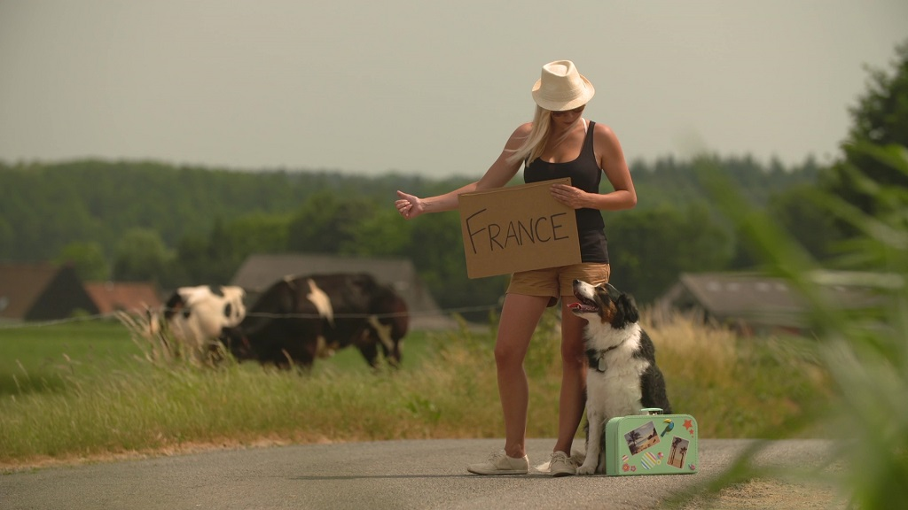 A woman and her dog are holding a sign which says 'France' and hitchhiking on the side of a road.